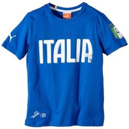 Puma FIGC Italia Graphic Tee Mens T-Shirt